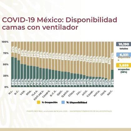Gráfico sobre la capacidad hospitalaria nacional de camas de ventilación (Foto: SSA)